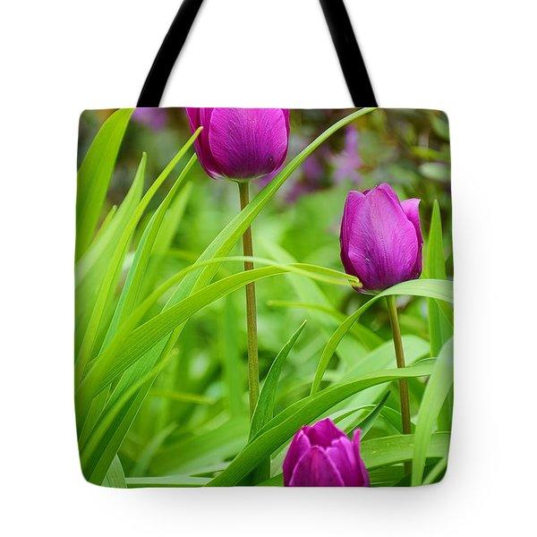Purple Gems- Purple Tulips Rhode Island Tulips Purple Flower Tote Bag by Lourry Legarde