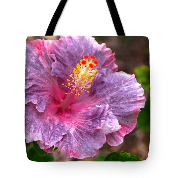 Purple Hibiscus Tote Bag by Brian Harig