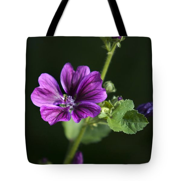 Purple Hollyhock Flowers Tote Bag by Christina Rollo