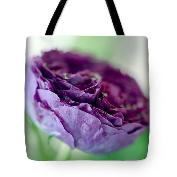 Purple Rose Tote Bag by Frank Tschakert