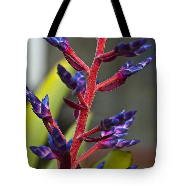 Purple Spike Bromeliad Tote Bag by Sharon Cummings