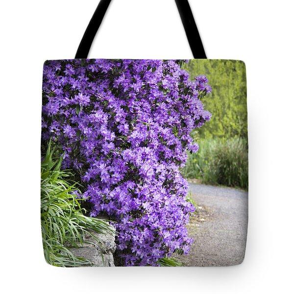 Purple Spring Tote Bag by Priya Ghose