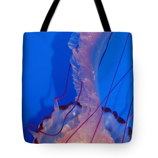 Purple Striped Jelly Fish 5D24929 Tote Bag by Wingsdomain Art and Photography