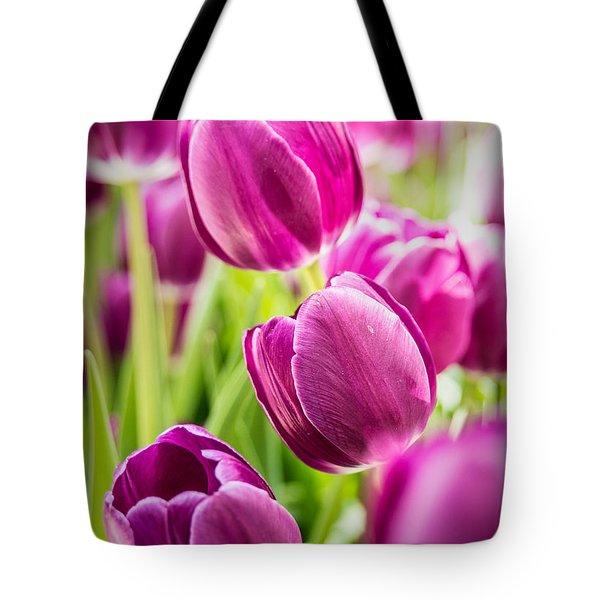 Purple Tulip Garden Tote Bag by  Onyonet  Photo Studios