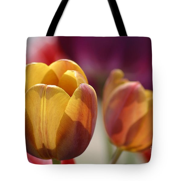 Purpleyellowtulips7016 Tote Bag by Gary Gingrich Galleries
