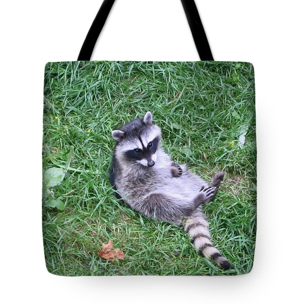 Raccoon Plays In The Grass Tote Bag by Kym Backland