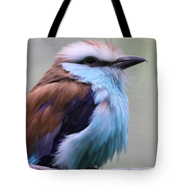 Racquet Tailed Roller Tote Bag by Dan Sproul