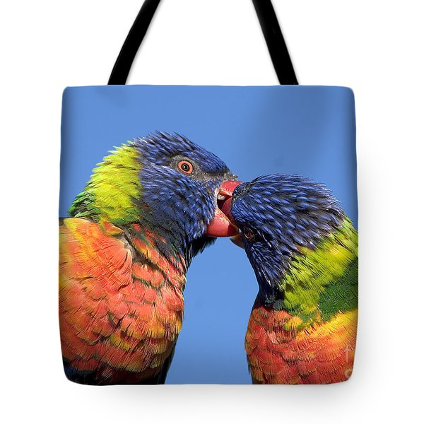 Rainbow Lorikeets Tote Bag by Steven Ralser