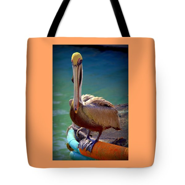 Rainbow Pelican Tote Bag by Karen Wiles