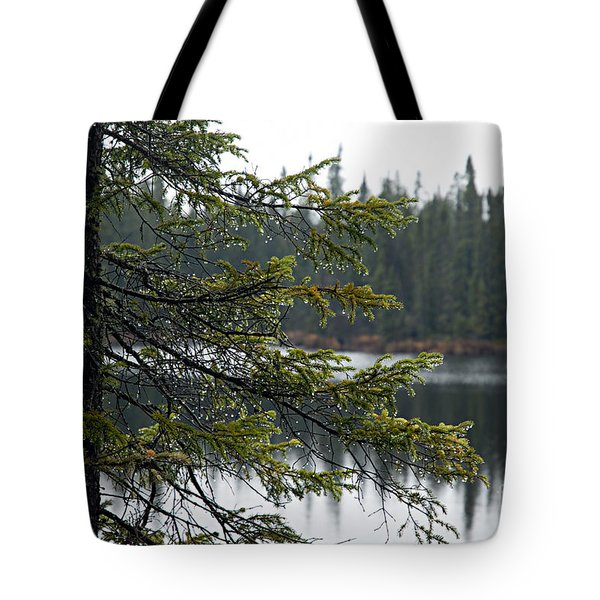 Raindrops On An Evergreen Tote Bag by Larry Ricker
