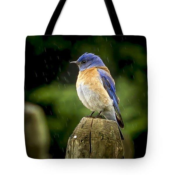 Raining Tote Bag by Jean Noren