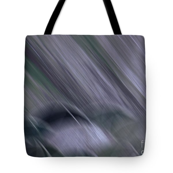 Rainy By Jrr Tote Bag by First Star Art