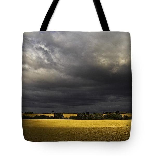 rapefield under dark sky Tote Bag by Heiko Koehrer-Wagner