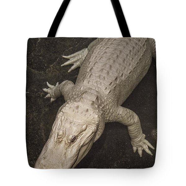 Rare White Alligator Tote Bag by Garry Gay