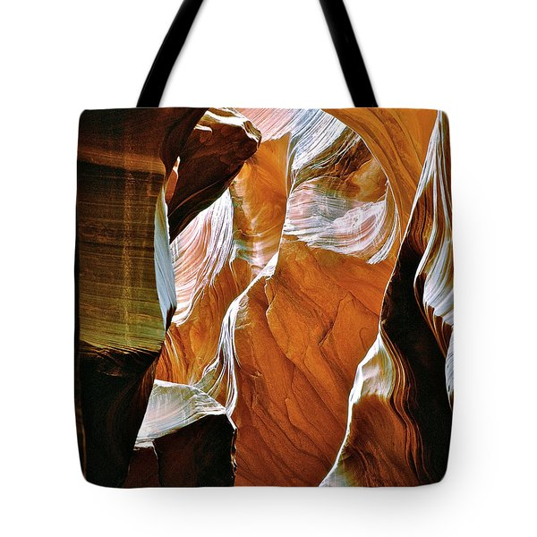 Rattlesnake Canyon Tote Bag by Ed  Riche