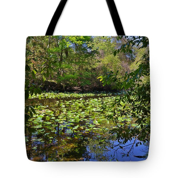 Ravine Gardens - A Different Look at Florida Tote Bag by Christine Till