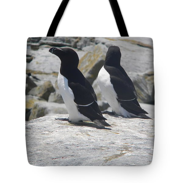 Razorbills 2 Tote Bag by James Petersen