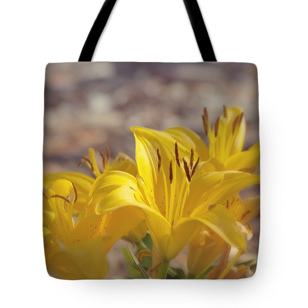 Reaching for the Light Tote Bag by Kim Hojnacki