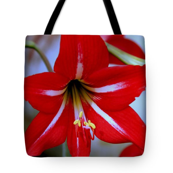 Red And White Lilly Tote Bag by Debra Forand