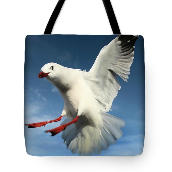 Red Billed Seagull  Tote Bag by Amanda Stadther