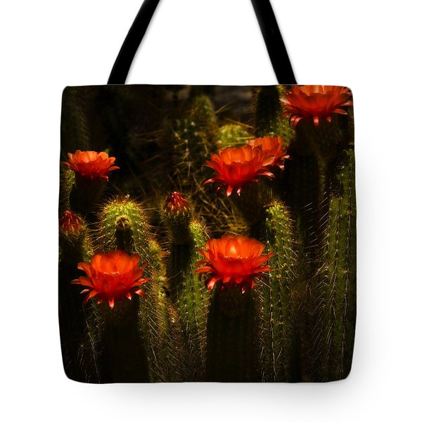 Red Cactus Flowers II  Tote Bag by Saija  Lehtonen