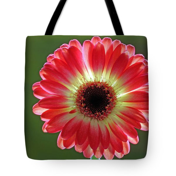 Red Celebration Tote Bag by Juergen Roth