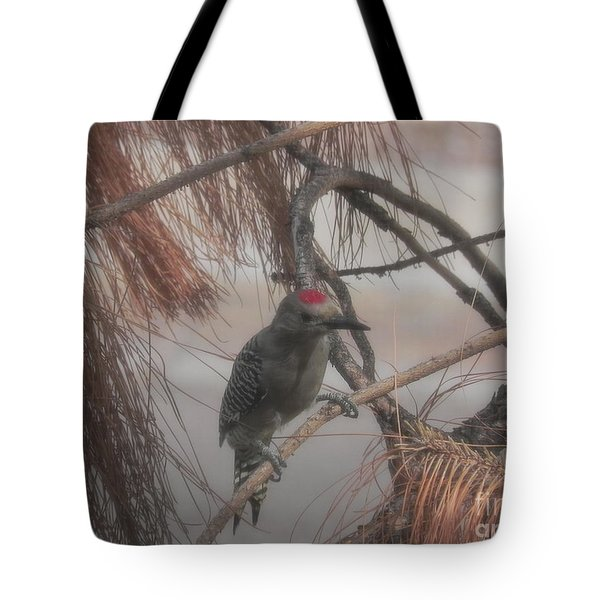 Red Crested Wood Pecker In Az Tote Bag by Chrisann Ellis