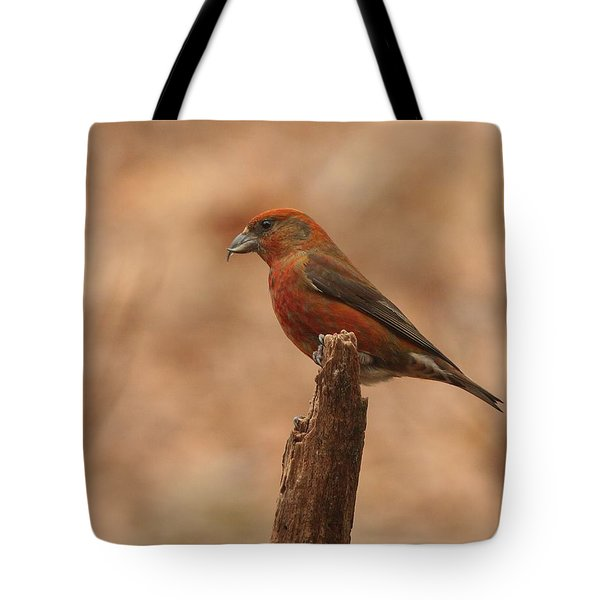 Red Crossbill Tote Bag by Charles Owens
