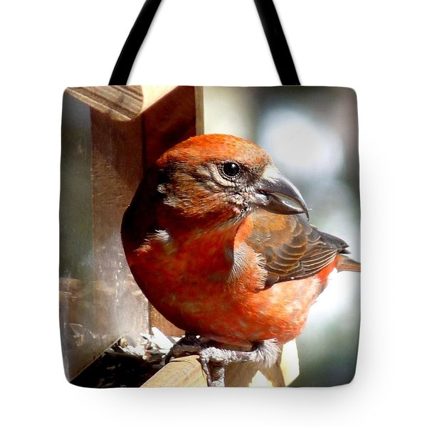 Red Crossbill Tote Bag by Marilyn Burton