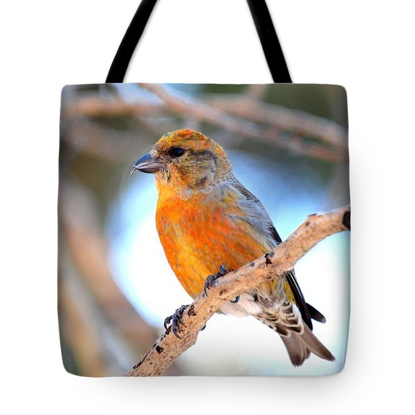 Red Crossbill On Aspen Tote Bag by Marilyn Burton