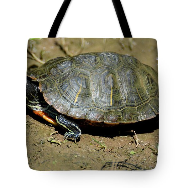 Red Ear Slider Tote Bag by Todd Hostetter