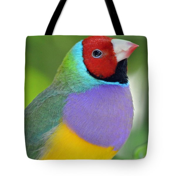 Red Faced Gouldian Finch Tote Bag by Richard Bryce and Family