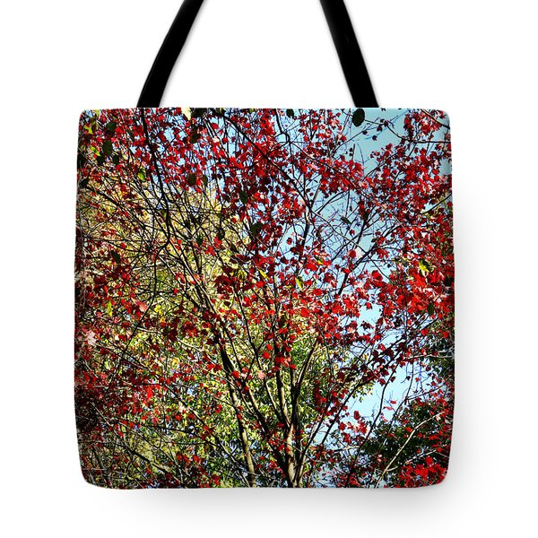 Red Fall Foliage Tote Bag by Tina M Wenger