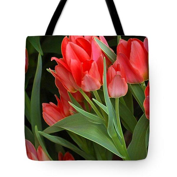 Red Ladies Tote Bag by Kathleen Struckle