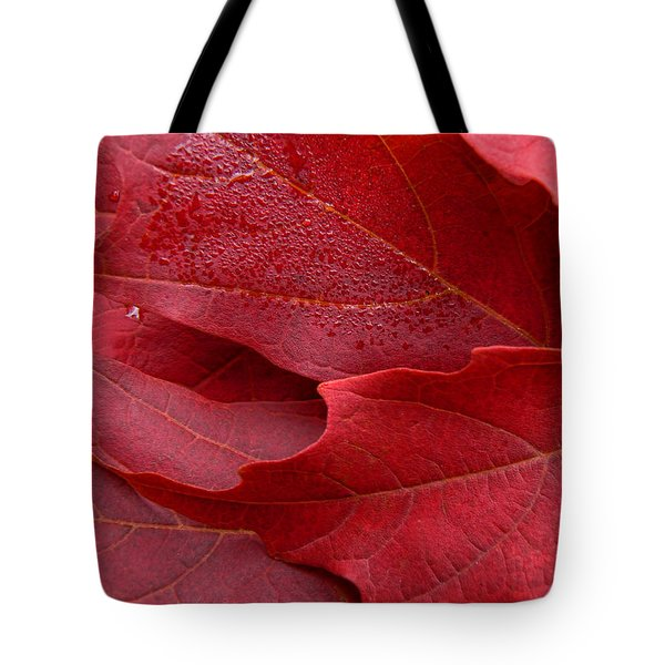 Red Maple Leaves Tote Bag by Jennie Marie Schell