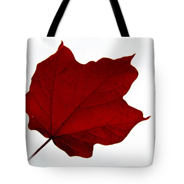 Red Maple Now Tote Bag by Tina M Wenger