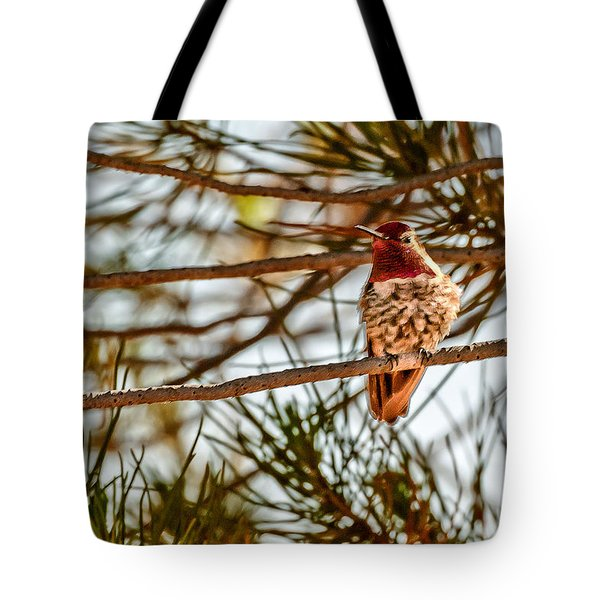 Red Rock Country Hummingbird Tote Bag by Bob and Nadine Johnston