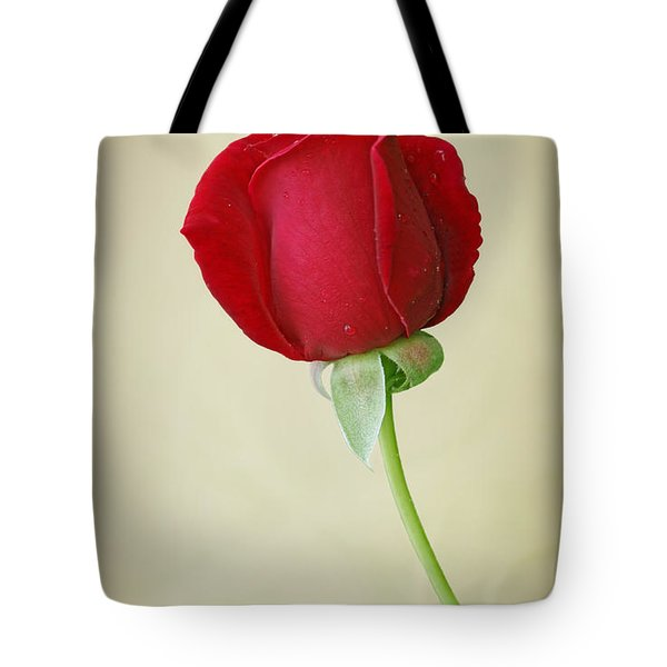 Red Rose On White Tote Bag by Sandy Keeton