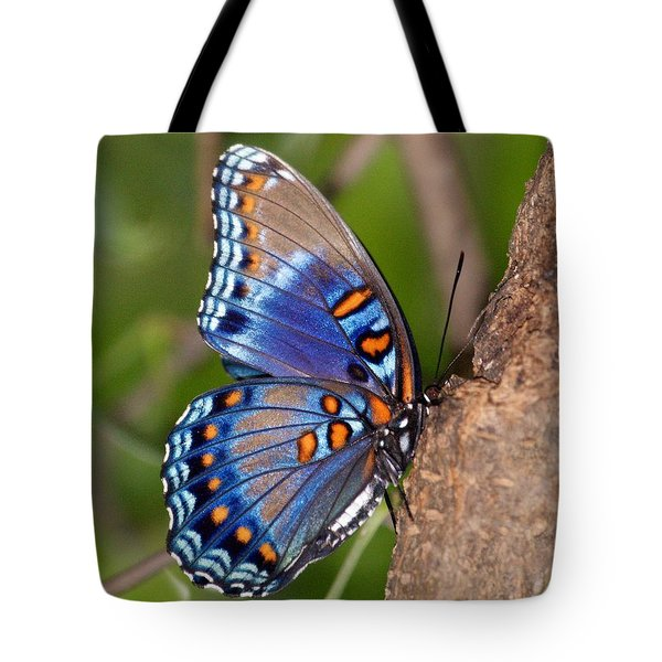 Red Spotted Purple Butterfly Tote Bag by Sandy Keeton