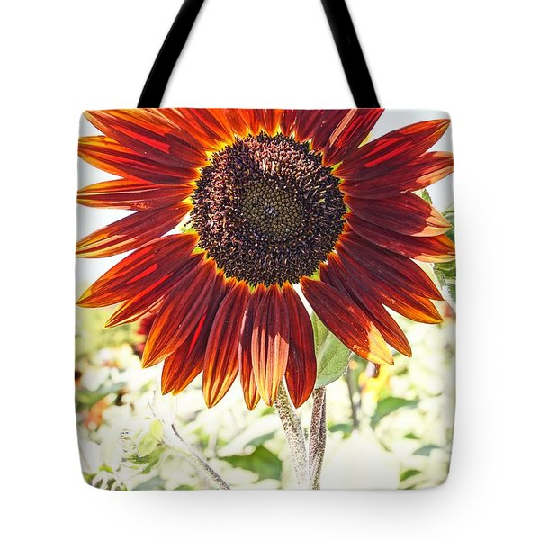 Red Sunflower Glow Tote Bag by Kerri Mortenson