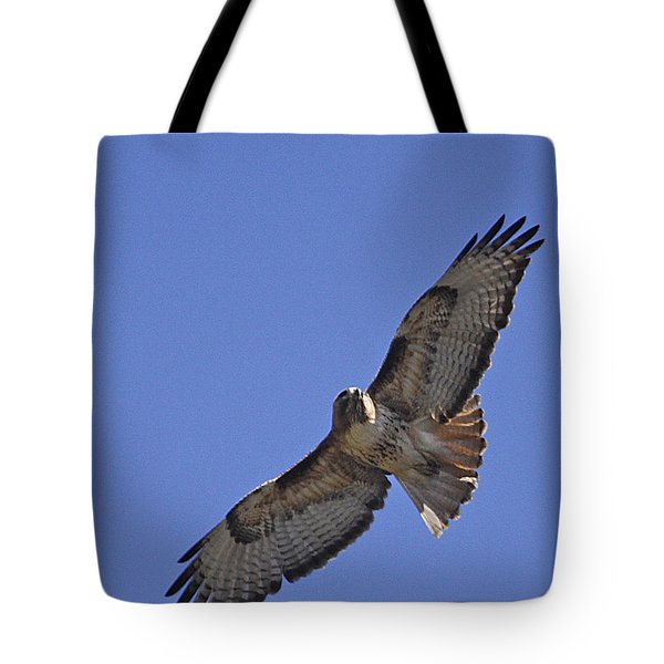 Red-tail Hawk  #1853 Tote Bag by J L Woody Wooden