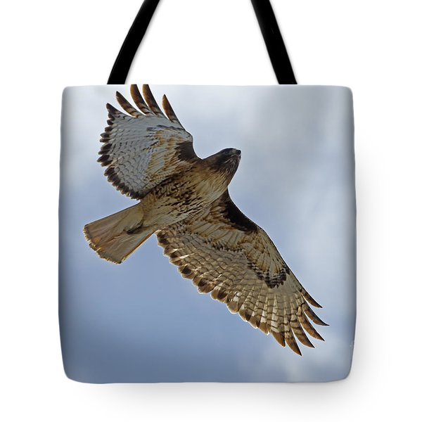 Red-tail Hawk #3094 Tote Bag by J L Woody Wooden