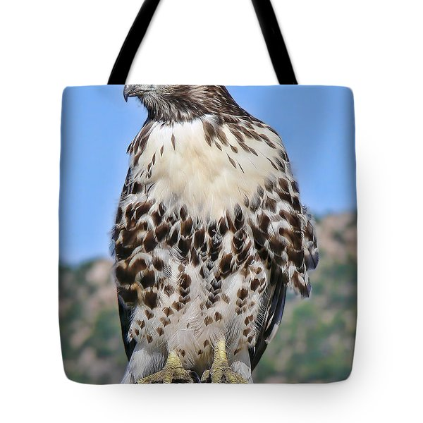Red Tail Hawk Youth Tote Bag by Jennie Marie Schell