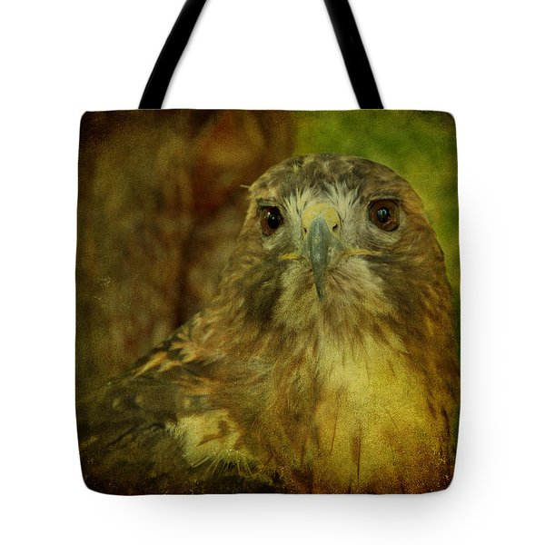 Red-tailed Hawk II Tote Bag by Sandy Keeton