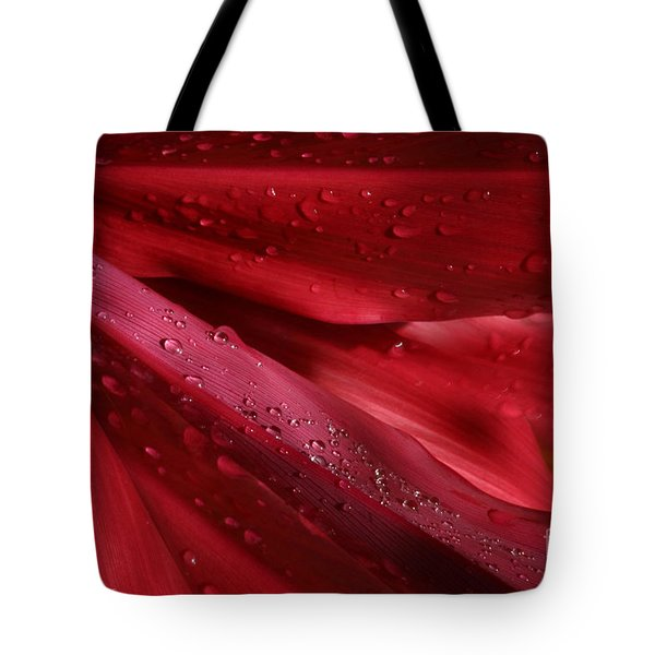 Red Ti The Queen Of Tropical Foliage Tote Bag by Sharon Mau