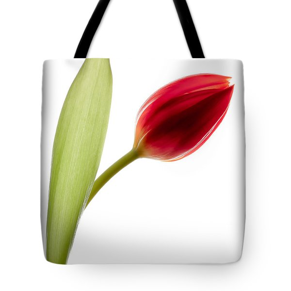Red Tulip Tote Bag by Dave Bowman