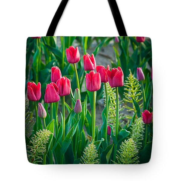 Red Tulips In Skagit Valley Tote Bag by Inge Johnsson