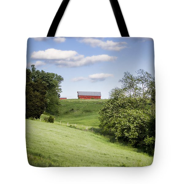 Red White and Blue Tote Bag by Heather Applegate