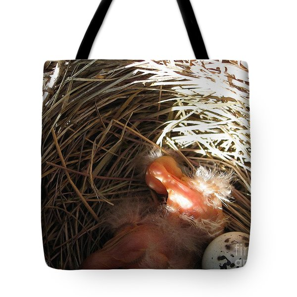 Red-winged Blackbird Babies and Egg Tote Bag by J McCombie