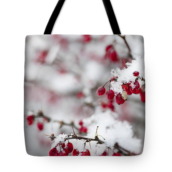Red Winter Berries Under Snow Tote Bag by Elena Elisseeva